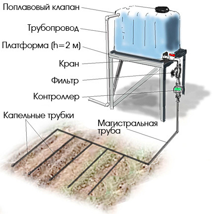 Как сделать капельную систему полив