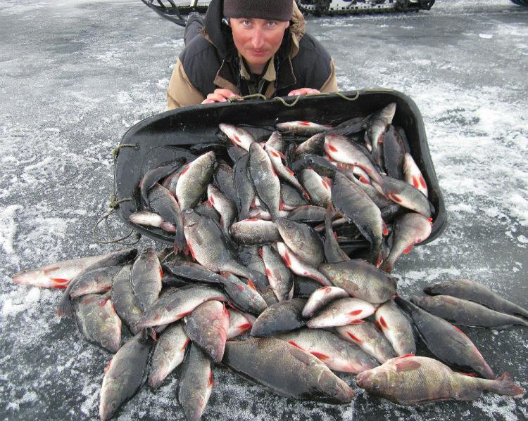 где на ладоге хорошая рыбалка